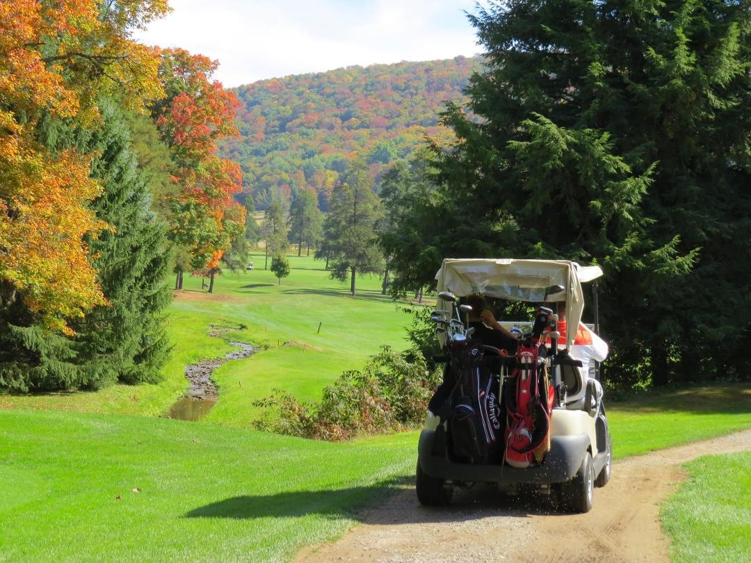 Area Golfing:  Kane Country Club, PennHills Club, Pine Acres Country Club, Smethport Country Club